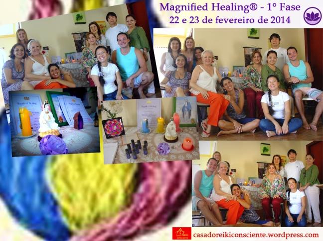 Curso Magnified Healing-22 e23 fev2014